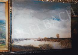 Mednyánszky László - Mocsaras táj, 42x53 cm, olaj, vászon, Jelezve jobbra lent: Mednyánszky, Fotó: Kieselbach Tamás