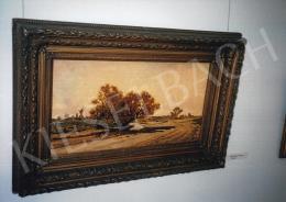 Böhm Pál - Tájkép, olaj, vászon, Fotó: Kieselbach Tamás