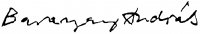 Baranyay András aláírása