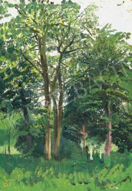 Mednyánszky László - Tavaszi erdő