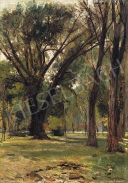 Berkes Antal - Városliget, 1903