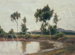 Edvi Illés Aladár - Vízpart