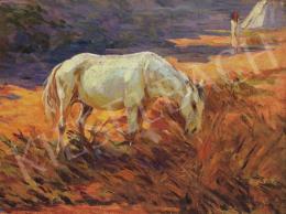 Czigány Dezső - Ló vízparton
