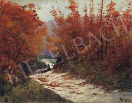 K. Spányi, Béla - Autumn Colours