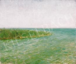 Szinyei Merse Pál - Balaton széle (Bivalyfürdő)