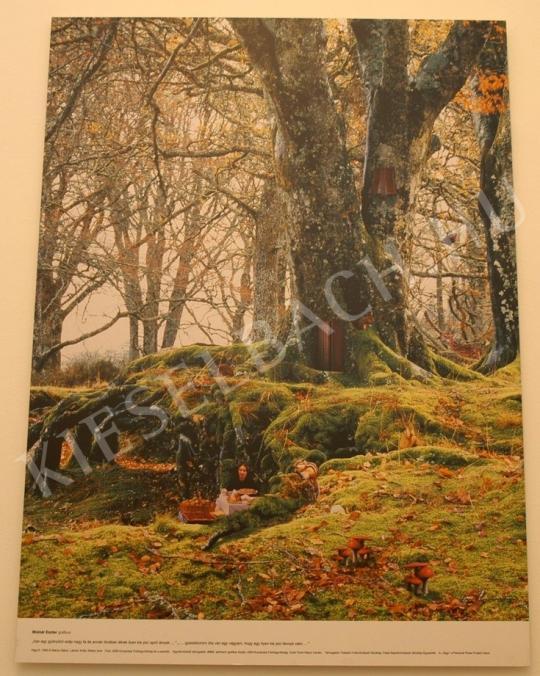Wéber Imre (1959)-Lakner Antal (1966) - Vágy / Dreams festménye