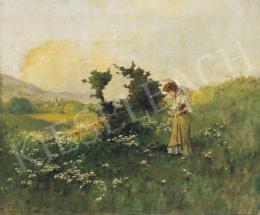 Neogrády, Antal - In the Field
