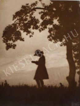 Kerny, István - The Diligent, 1919