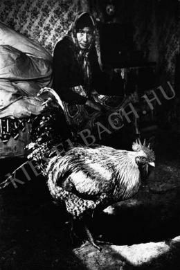 Stalter György - Ráckeve, 1994