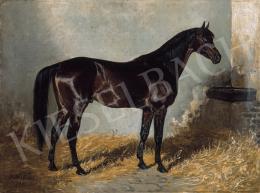 Büttner, Heléne - Indian Star (1888)