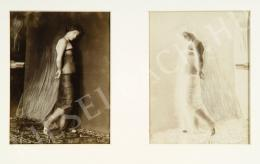 Rónai Dénes - Nő átlátszó ruhában I-II.