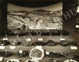 Balogh Rudolf - Mezőgazdasági kiállítás, 1929
