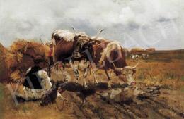 Deák Ébner, Lajos - After Rain