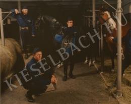 Fabricius Anna - Lovagok és lovarnők