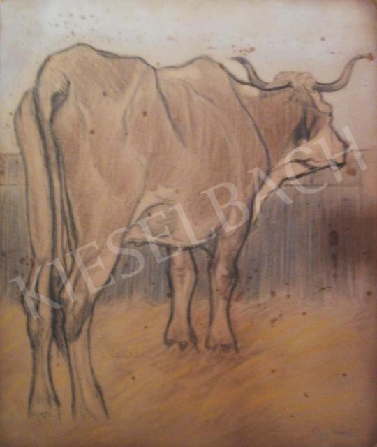 For sale Pap, Géza - Cow 's painting