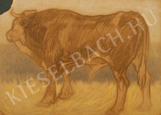 Eladó Pap Géza - Nagy bika, 1910 körül festménye