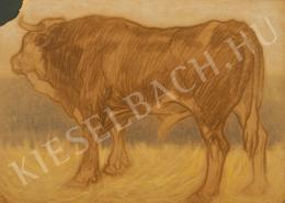 Pap, Géza - Big Bull, c. 1910