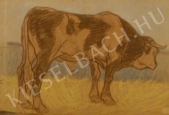 For sale Pap, Géza - Bull, c. 1910 's painting