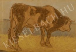 Pap, Géza - Bull, c. 1910