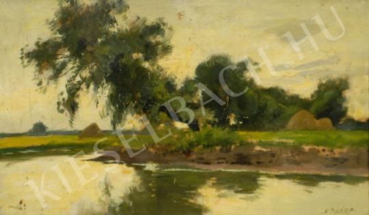 For sale  Edvi Illés, Aladár - Riverside landscape 's painting