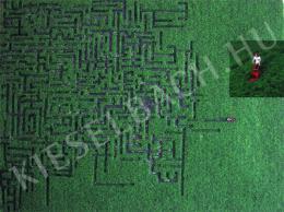 Karácsonyi, László - Unofficial Labyrinth (2011)