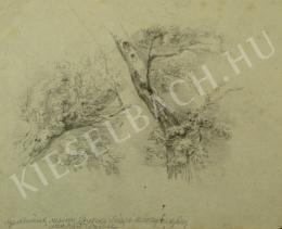 Mednyánszky László - Fatanulmányok (Lombos fák) (1860 körül)