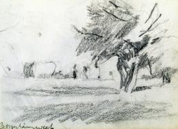 Nyilasy Sándor - Boszorkánysziget (1910 körül)