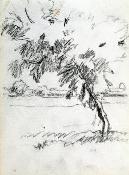 Nyilasy Sándor - Fa a Tisza-partján (1910 körül)