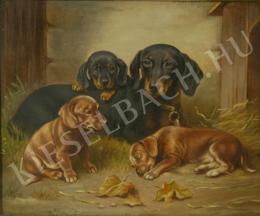 Reichert, Carl - Tacskók (Kutya a kölykeivel)