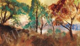 Szőnyi István - Tavaszi színek (Zebegény)