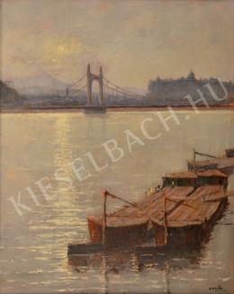 Guzsik Ödön - Az Erzsébet-híd a budai várral
