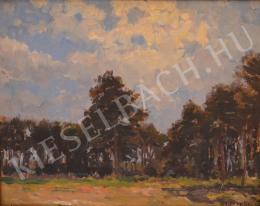 Bosznay, István - Landscape at Malacka (Malacky) (1922)