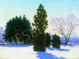 Börtsök Samu - Park télen