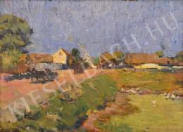 Turmayer Sándor - Kis lápos a falu szélén