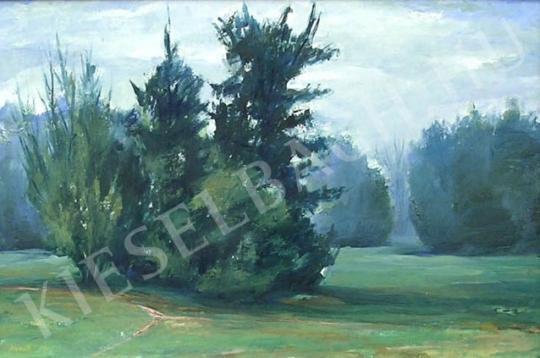 For sale  Németh, Zsuzsa (Klemmné Németh Zsuzsa) - Pine-Grove 's painting