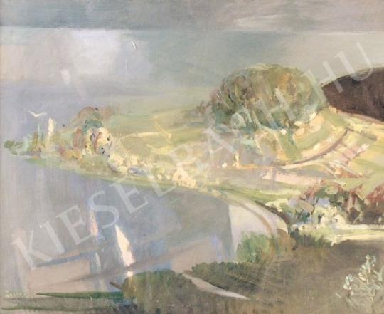 Eladó  Soltra Elemér - Királyné szoknyája festménye