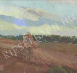 Somogyi, János - At the Fields