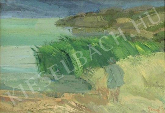 Eladó  Somogyi János - Viharos part festménye