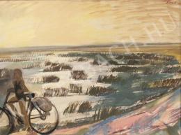 Szurcsik János - Zsombékos táj