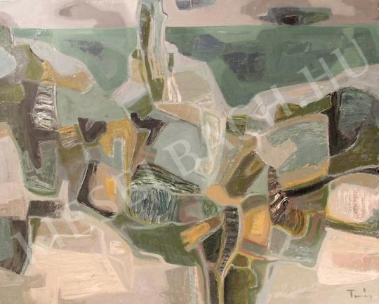 Eladó Tamás Ervin - Balaton-part festménye