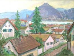 Tokay Ilona - Táj