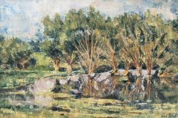 Vati József - Ártér
