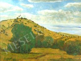 Vértesi Péter - A domb