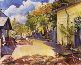 Ziffer Sándor - Nagybányai kert