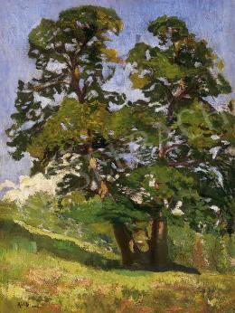 Réth Alfréd - Napsütötte fa  Nagybányán