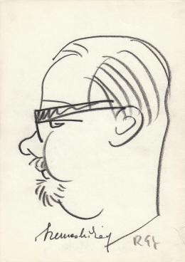 Rózsahegyi György - Szemes Mihály filmrendező portréja