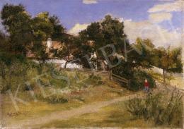Aggházy Gyula - Nyári napsütésben