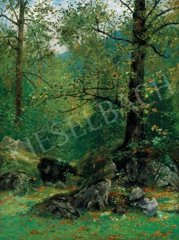 Kaufmann, Adolf - Erdőrészlet (1905)