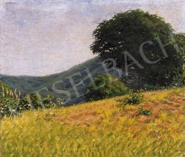 Börtsök, Samu - Ridge of a hill