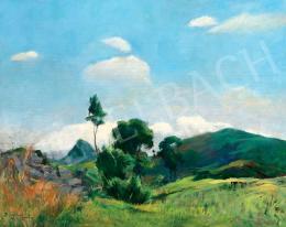 Benkhard Ágost - Lankás domboldal kék égbolttal